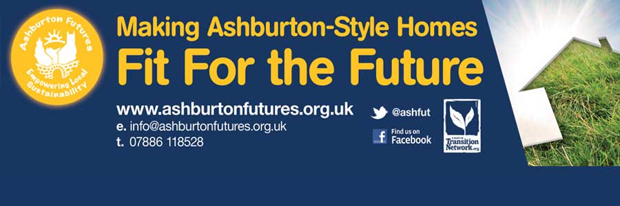 Ashburton Futures In The Transition Network
